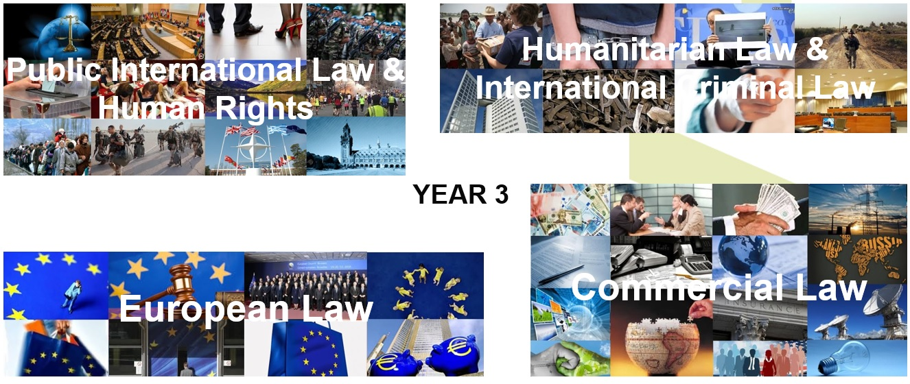Law specialisations